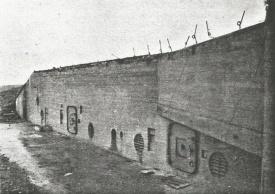 WW fig5a