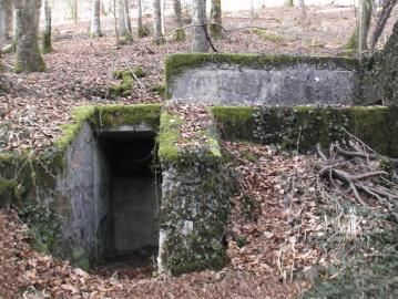 birgmatte nord niche