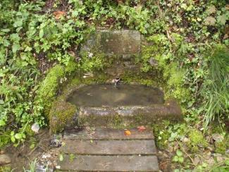 div fontaine
